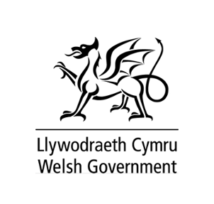 welsh government housing advice